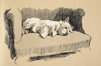 Cute Puppy Drawing - West Highlander, 1930 by Cecil Charles Windsor Aldin
