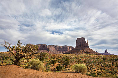 Photograph - West Mittens - Monument Valley - Arizona by Brian Harig