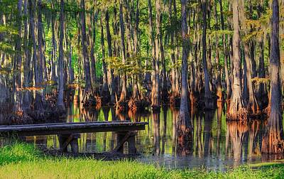 Bayou Abstract Photograph - West Monroe Swamp Dock by Ester  Rogers