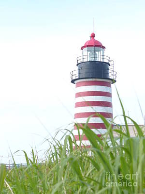 Photograph - West Quoddy Head Lighthouse Tower From The Field by Christine Stack