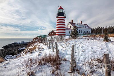 Photograph - West Quoddy Winter by Susan Cole Kelly