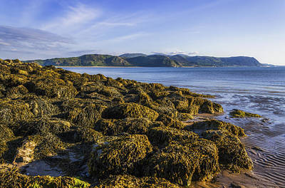 Photograph - West Shore by Ian Mitchell