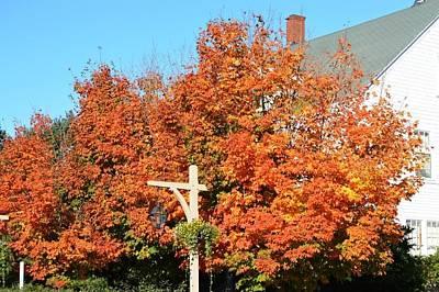 West Street Fall Colors Original