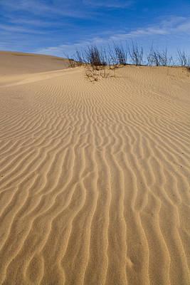Photograph - West Texas Sand Dunes by Brian Grzelewski