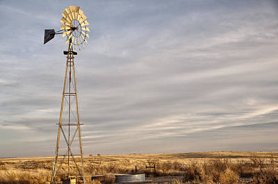 Photograph - West Texas Sentry by Melany Sarafis