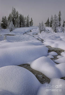 Photograph - West Thumb Snow Pillows II by Sandra Bronstein