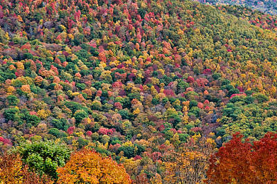 Photograph - West Virginia Hillside by Steve Stuller