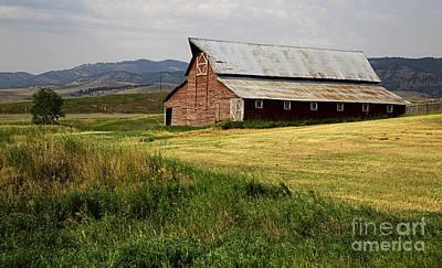 Photograph - Western Barn Montana by Edward Fielding