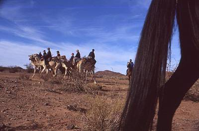 Photograph - Western Cape Desert South Africa 1996 by Rolf Ashby
