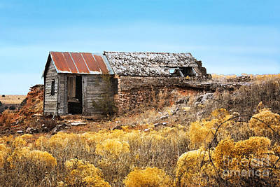 Abandoned Houses Digital Art - Western Half Dugout by Betty LaRue