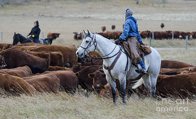 Cattle Drive Photograph - Western Living 2 by Bob Christopher