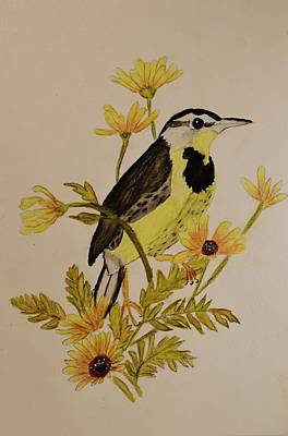 Linda Brown Painting - Western Meadowlark by Linda Brown