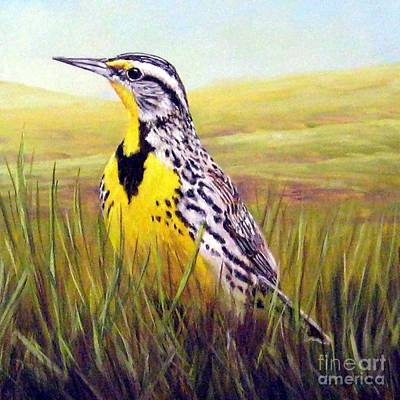 Meadowlark Painting - Western Meadowlark by Tom Chapman