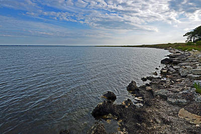 Photograph - Western Shore Of Chincoteague Bay by Bill Swartwout