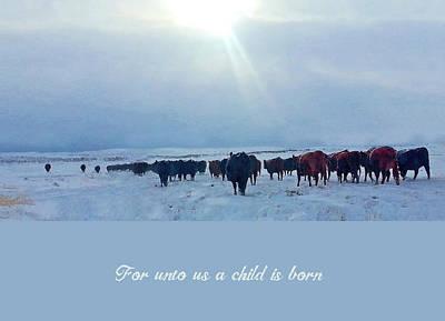 Mixed Media - Western Themed Christmas Card Winter Push by Amanda Smith