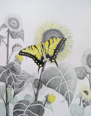 Western Tiger Swallowtail And Sunflower Art Print