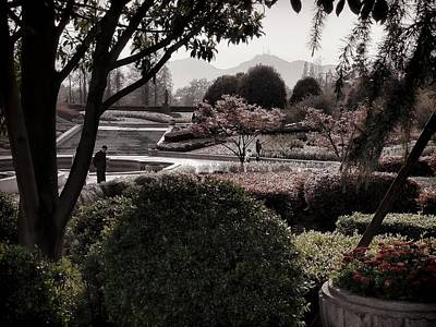Photograph - Westlake Gardens by Robert Knight