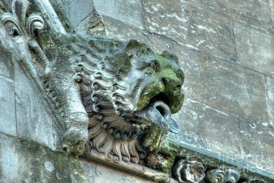 Photograph - Westminster Abbey Gargoyle 3 by Deborah Smolinske