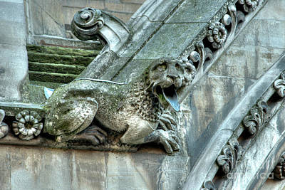 Photograph - Westminster Abbey Gargoyle 6 by Deborah Smolinske