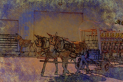 Photograph - Westmoreland Mule Day by EricaMaxine  Price