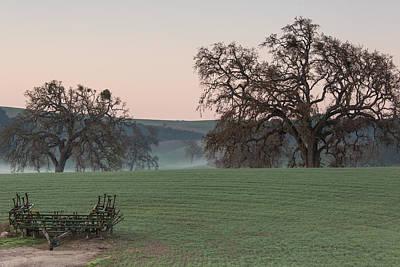 Photograph - Westside Morning by Tim Bryan