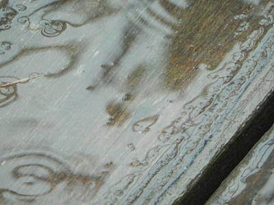 Photograph - Wet Deck by Betty-Anne McDonald