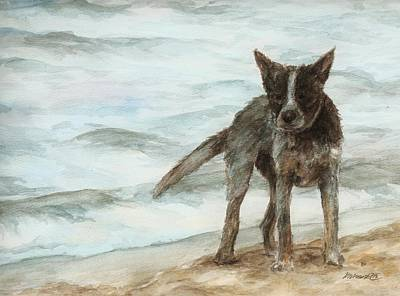 Wet Dog - Cattle Dog Art Print