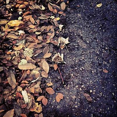 Surface Photograph - Wet Leaves In November by Nic Squirrell