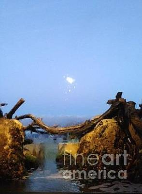 Photograph - Wet Moon by Laura Hamill
