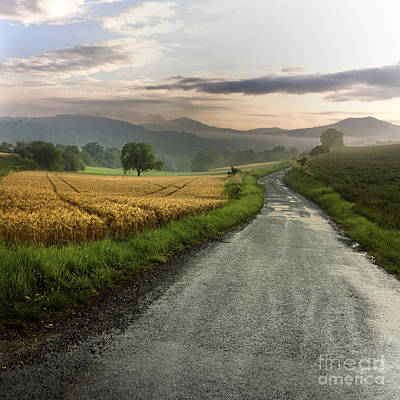 Wet Road Through Fields Of Wheat. Auvergne. France. Print by Bernard Jaubert