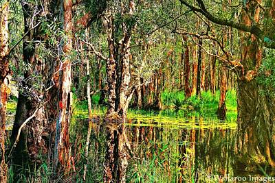 Photograph - Wetland Reflections by Wallaroo Images