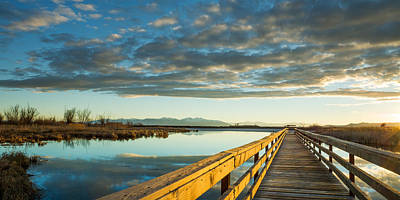 Photograph - Wetland Wooden Path by Jeremy Farnsworth