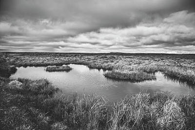 Photograph - Wetland by Xavierarnau