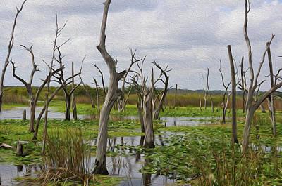 Priska Wettstein Pink Hues - Wetlands by Csaba Friss