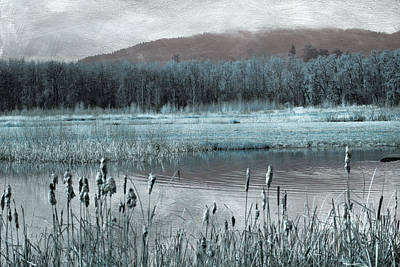Photograph - Wetlands by Bonnie Bruno
