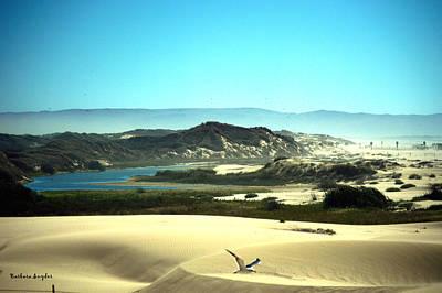 Seascape Digital Art - Wetlands In The Dunes by Barbara Snyder