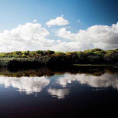 Landscape Photograph - Wetlands In West Coast National Park by Subman