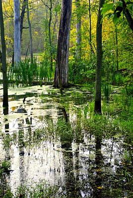 Wetlands Art Print by Frozen in Time Fine Art Photography