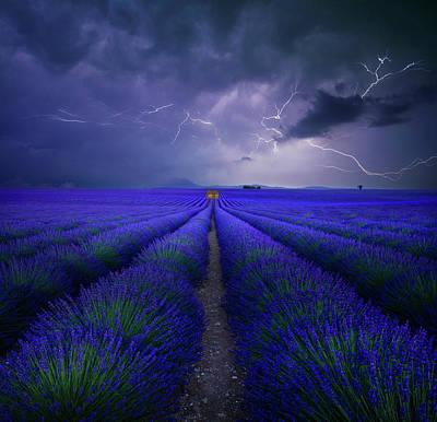 Lightning Wall Art - Photograph - Wetter Im Lavendelfeld by Franz Schumacher