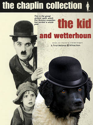 Painting - Wetterhoun-frisian Water Dog Art Canvas Print - The Kid Movie Poster by Sandra Sij