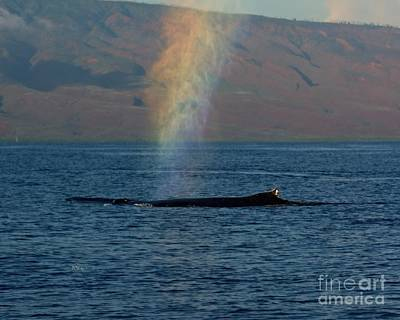 Photograph - Whale-8-leprechaun by Patrick Witz