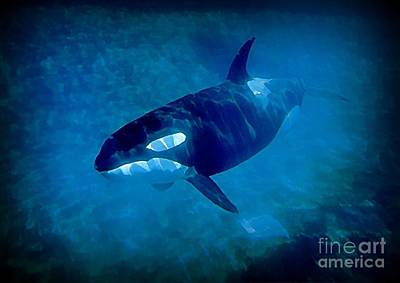 Orca Digital Art - Whale by John Malone
