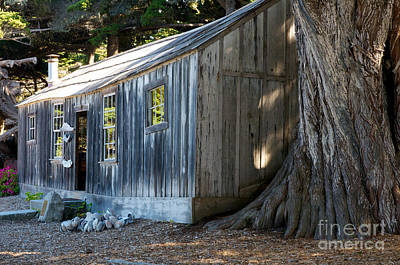 Art Print featuring the photograph Whaler's Cabin by Vinnie Oakes