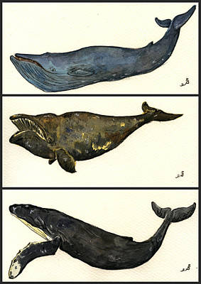 Whales Compilation 1 Art Print by Juan  Bosco