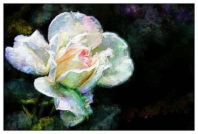 Photograph - What A Rose by Alice Gipson