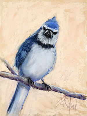 Bluejay Painting - What Are You Looking At by Billie Colson