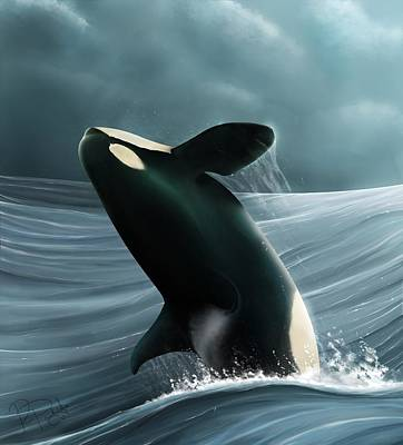 Orca Digital Art - What Freedom Looks Like by Rebecca Partridge