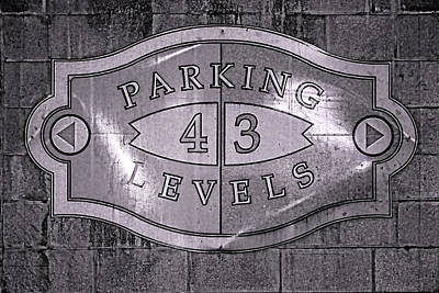 Photograph - What Is Your Level? by Robert Palmeri