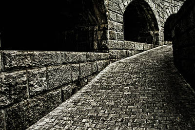 Landscapes Royalty-Free and Rights-Managed Images - What Lurks Around The Corner by Karol Livote