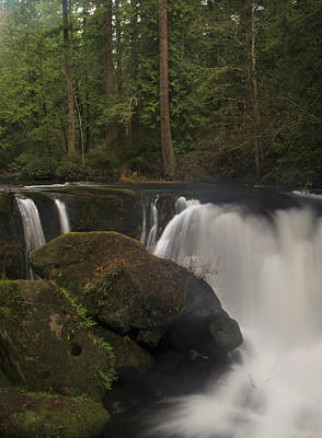 Photograph - Whatcom Falls by Sonya Lang